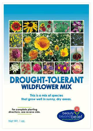 Drought Tolerant Wildflower Mix