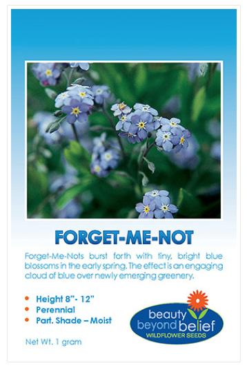 Forget- Me- Not