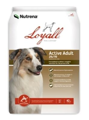 Active Adult Formula 26/19 Dog Food 40 lb Bag