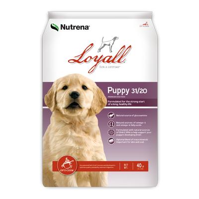 Puppy Formula 31/20 Dog Food 40 Lb. Bag