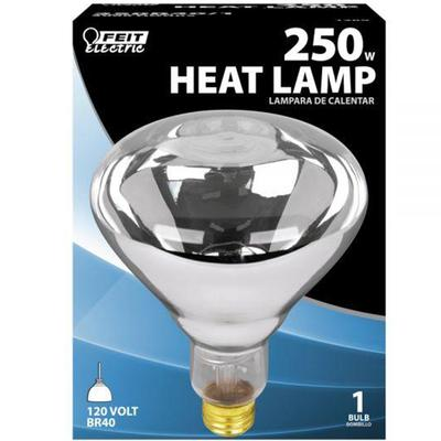 250 Watt Incandescent R40 Heat Lamp