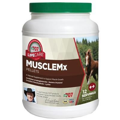 Equine MuscleMX Supplement