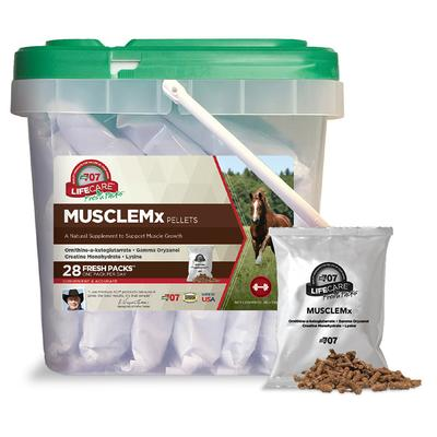 Equine MuscleMX Daily Fresh Pack Supplement