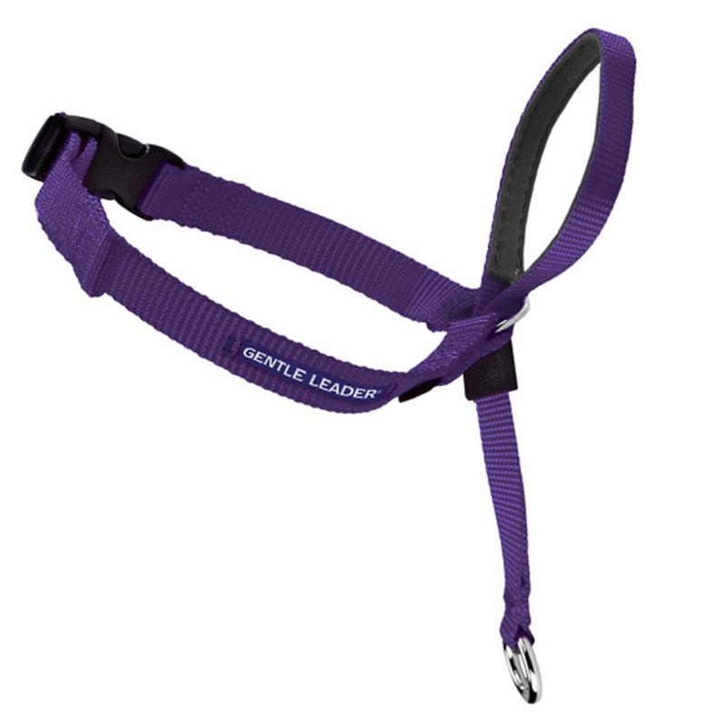 Gentle Leader Dog Headcollar