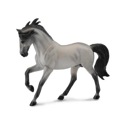 Grey Andalusian Stallion