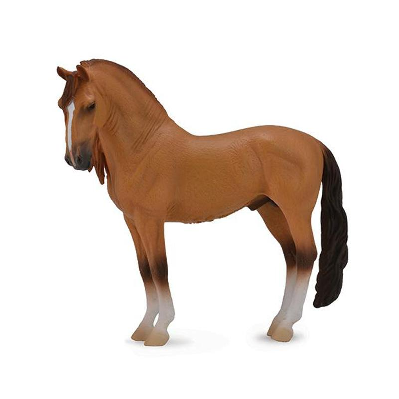 Red Dun Campolina Stallion