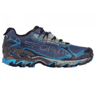 Men's Wildcat 2.0 GTX Shoe