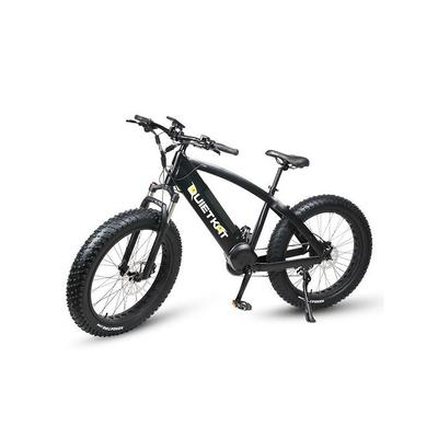 Ambush Electric Bike