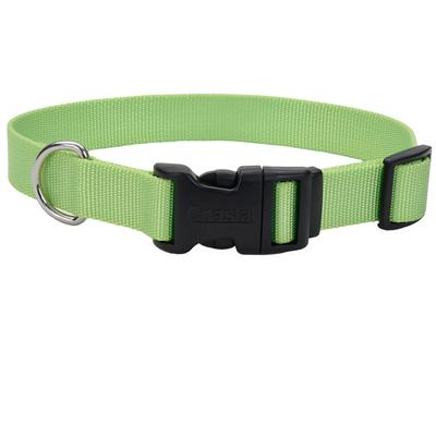 Adjustable Dog Collar with Plastic Buckle - 3/4