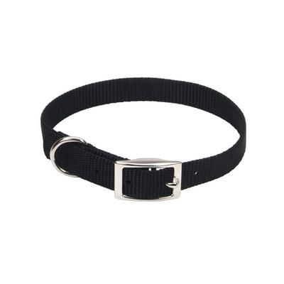 Single-Ply Dog Collar - 5/8