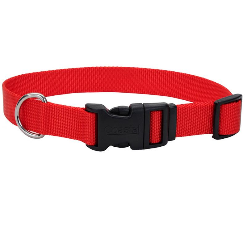 Adjustable Dog Collar With Plastic Buckle - 3/8