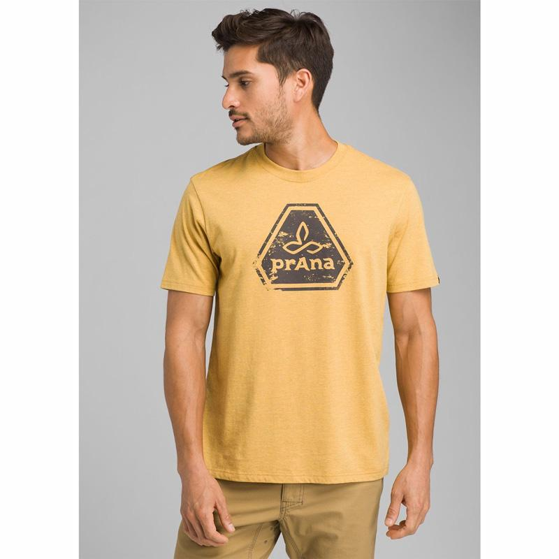 Men's Prana Icon T- Shirt