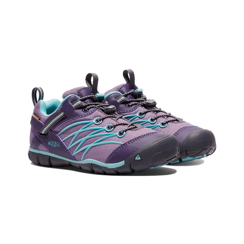 Big Kid's Chandler Waterproof Cnx Shoe