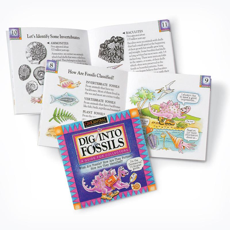 Dig Into Fossils Book