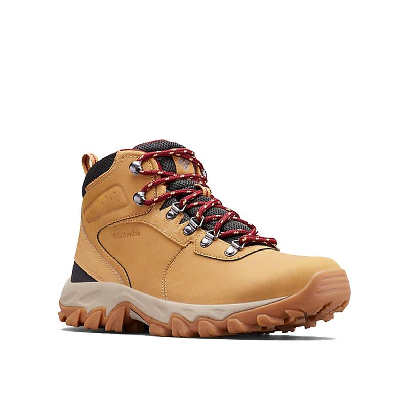 Men ' S Newton Ridge ™ Plus Ii Waterproof Hiking Boot