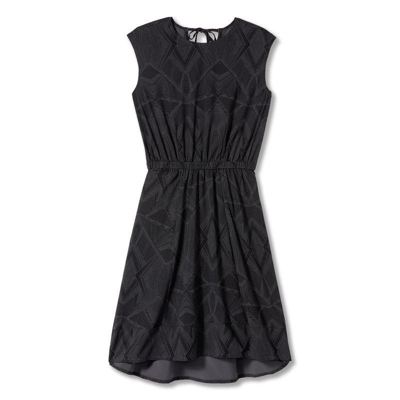 Women's Spotless Traveler Dress