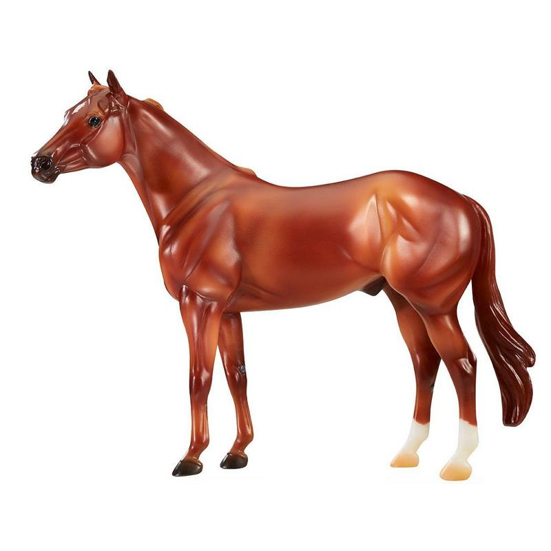 The Ideal Series - American Quarter Horse