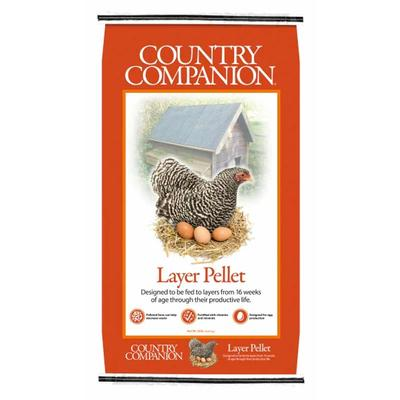 16% Layer Pellets Poultry Feed